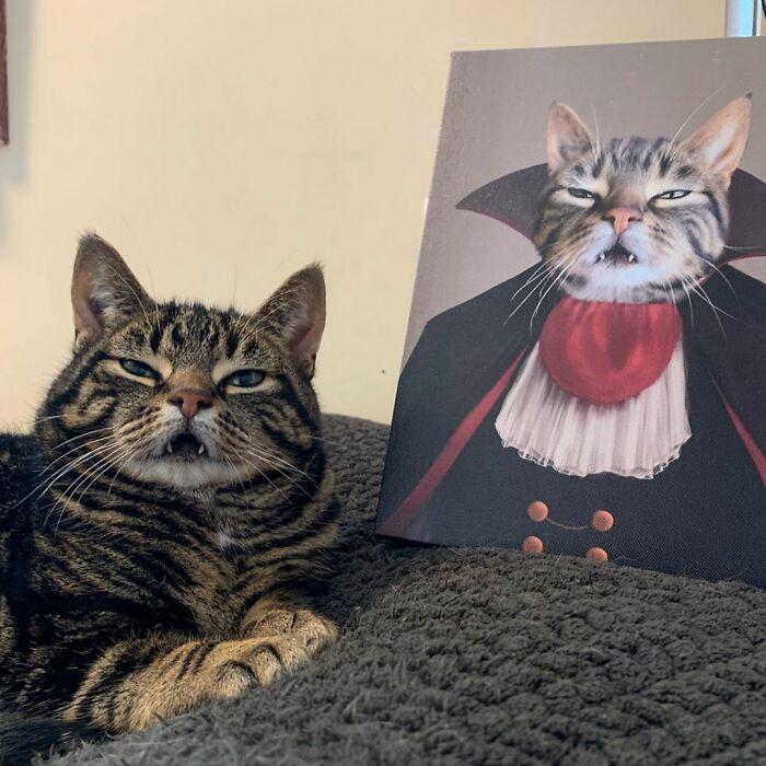 полосатый кот и его портрет