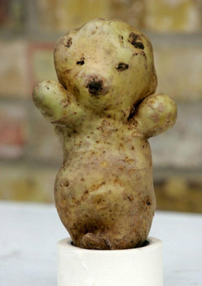 картошка в виде мишки