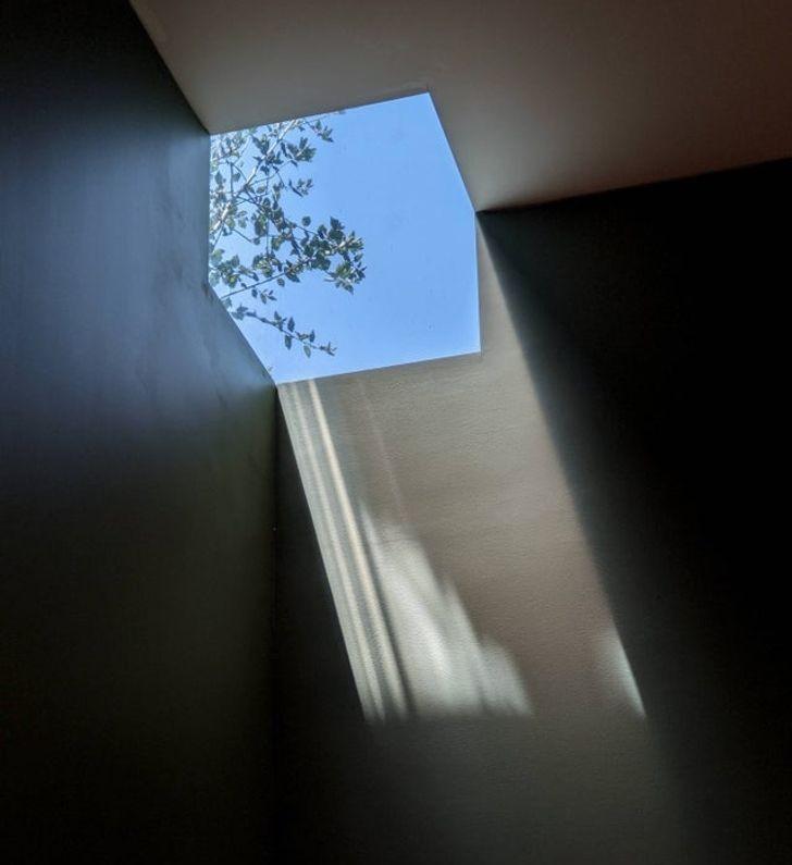 окно в потолке