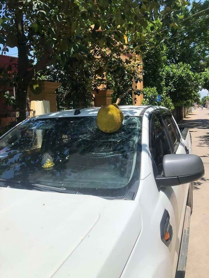 машина с разбитым лобовым стеклом