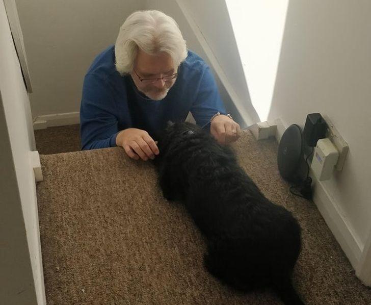 мужчина на ступеньках и собака