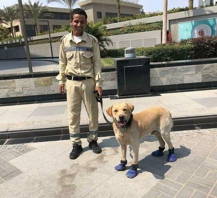 мужчина с собакой на поводке