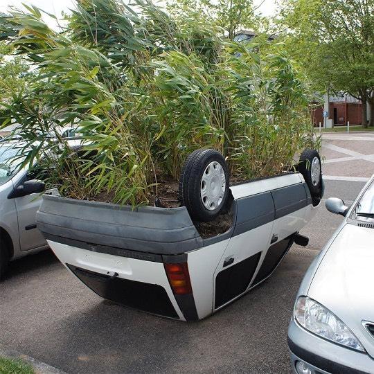зелень растет из днища машины